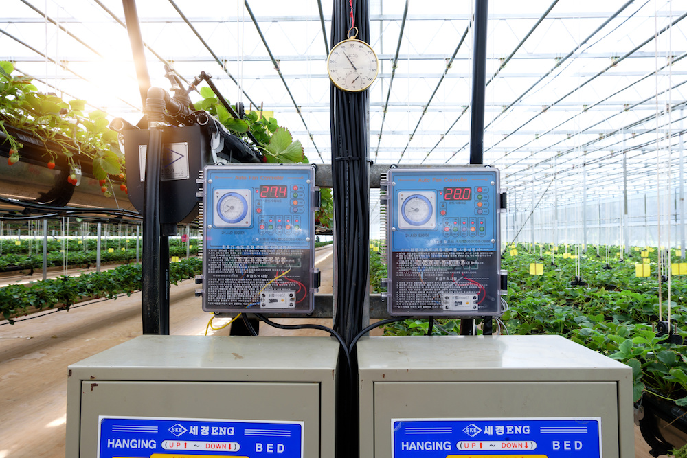 agritech investment in indoor farming